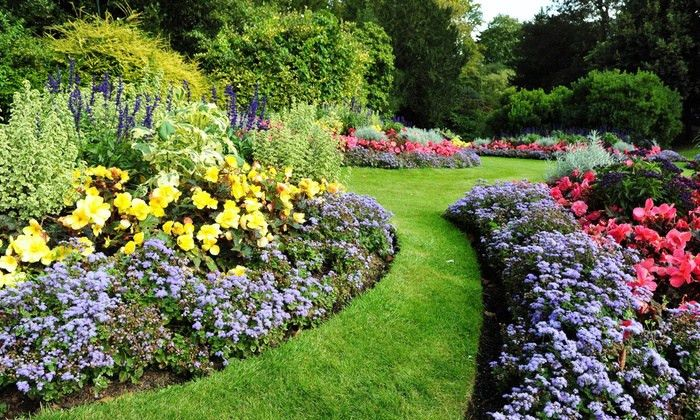 Lawn and Garden Care - Dustin's Lawn Care Services | Groupon