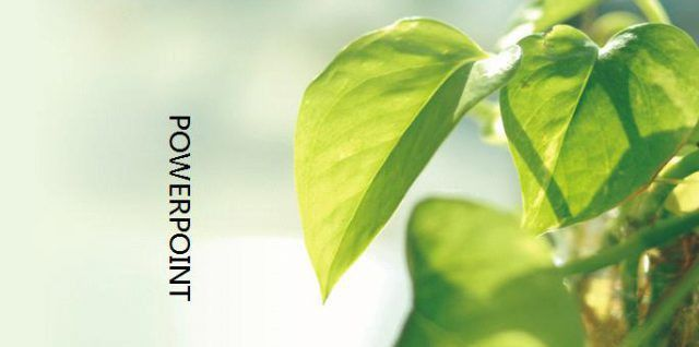 Environment&nature Template – Best Free powerpoint templates