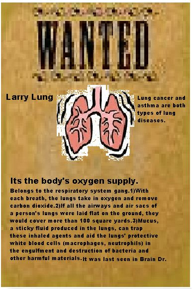 Downey-Biology-Studmuffins - sammy m. body organ wanted poster