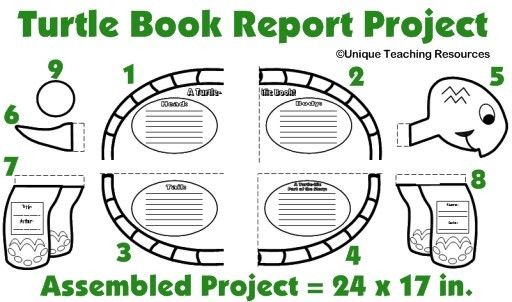 Turtle Book Report Project: templates, printable worksheets, and ...