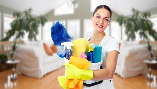Neat n Clean Home Services | House Cleaning | Home Watch | North ...