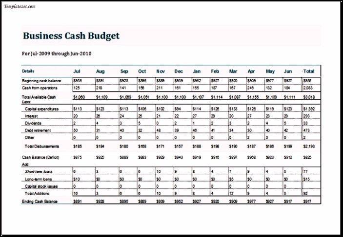 Business Cash Budget Template   TemplateZet