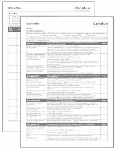 2 page sales plan