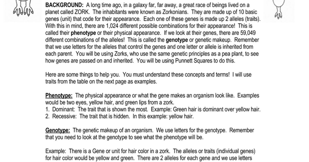 Zork Genetics Lab.doc - Google Docs