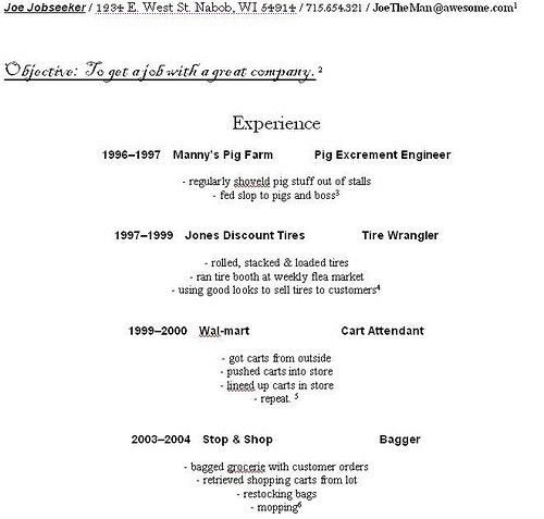 How To Make A Beginner Resume #1190
