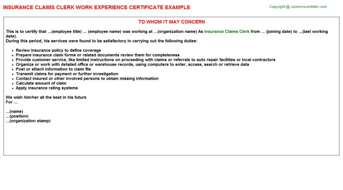 Insurance Work Experience Letters