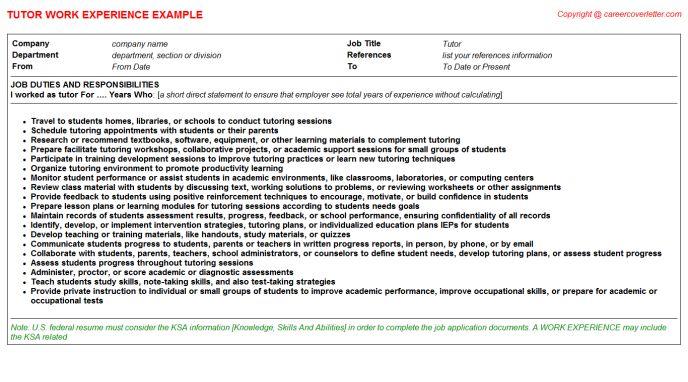 Economics Tutor CV Work Experience Samples