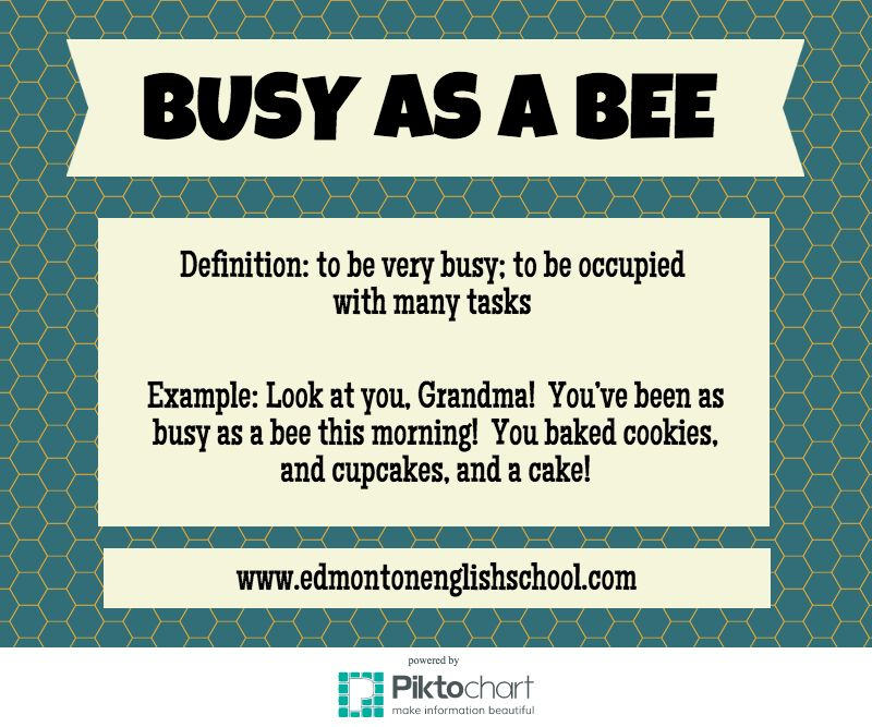 English Idioms & Expressions - BUSY AS A BEE | Learning English ...