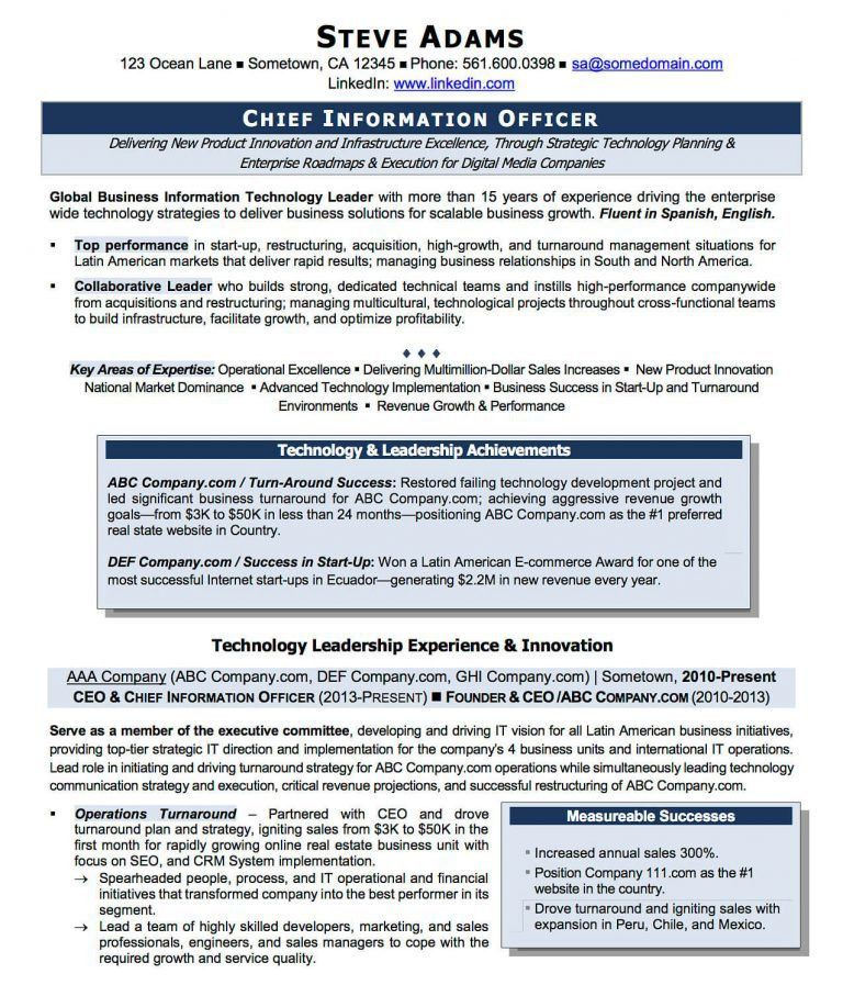 Cio Executive Resume Template. resume examples ceo resume ...