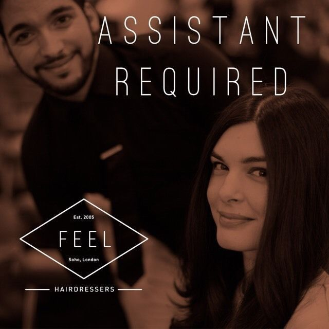 Hairdresser, Salon Assistant, Hairdressing assistant | in West End ...