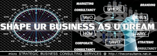 Business Consulting | India Entry | Political Consulting Services