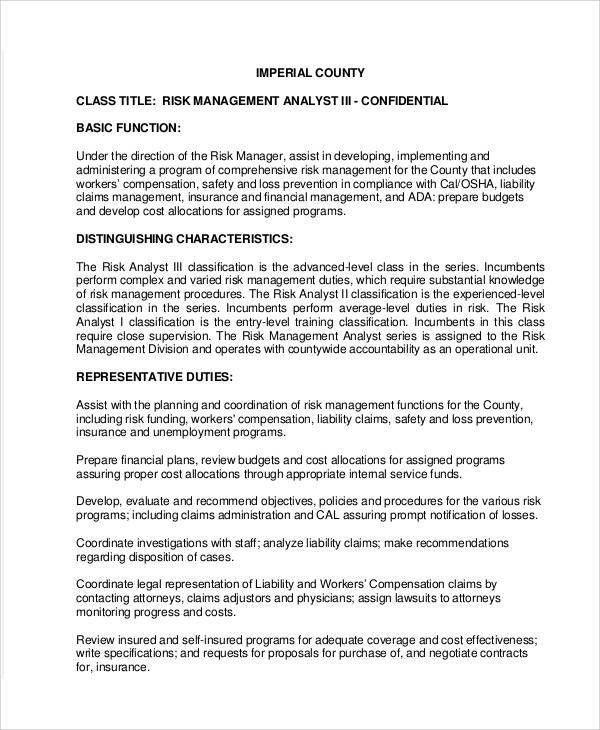 Risk Management Job Description Sample - 8+ Examples in Word, PDF