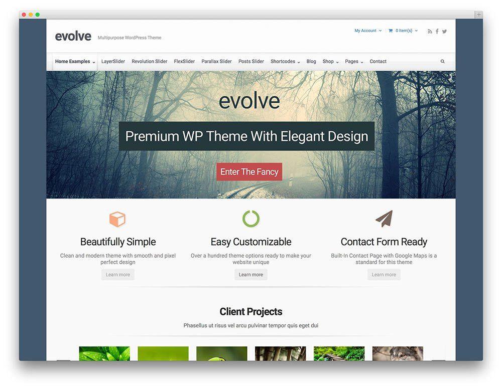 30+ Stunning & Free Responsive WordPress Portfolio Themes 2016 ...