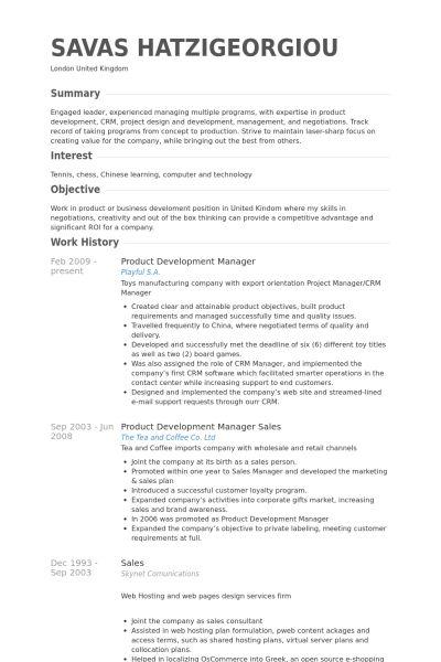 development manager resume