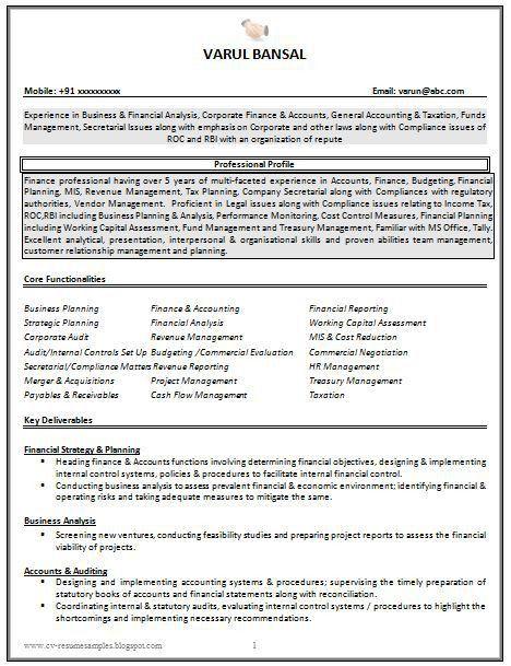 Best 25+ Cv resume sample ideas on Pinterest | Cv format sample ...