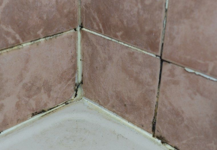 How Hard Water Leads to More Tile Cleaning and Recaulking - The ...