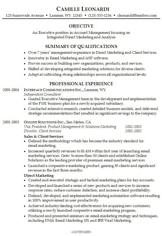 Enjoyable Design Ideas Resume Professional Summary 14 Professional .
