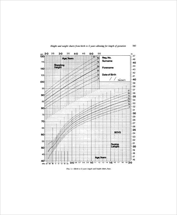 7+ Normal Height And Weight Chart Templates - Free Sample, Example ...