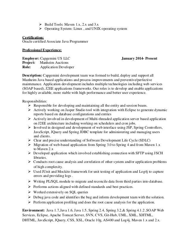 Perl Programmer Resume Web Developer Sample Writing Tips
