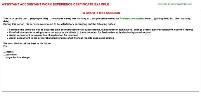 Assistant Accountant Work Experience Certificate