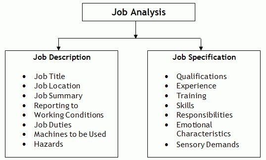 Job Description & Job Specification - Definition, Purpose, PPT