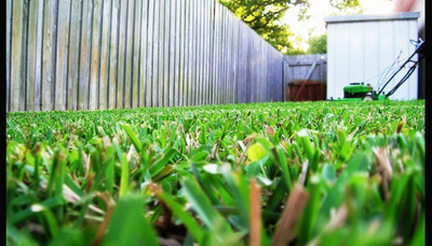 How to Start a Lawn Mowing Business for Kids | Bizfluent