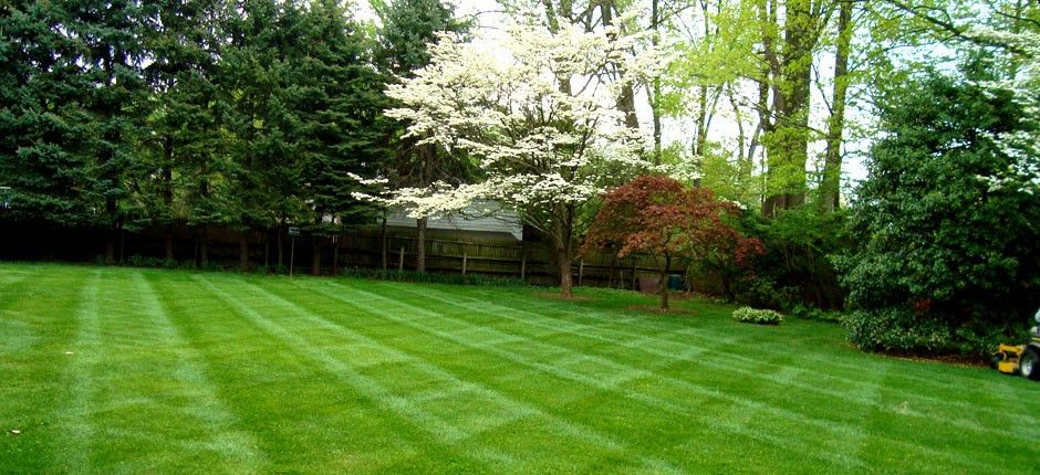 Bel Air MD Lawn Cutting Grass Mowing | JSM LawnCare