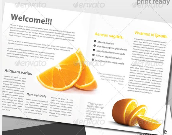Clean And Creative Modern Business Portfolio Brochures Design ...