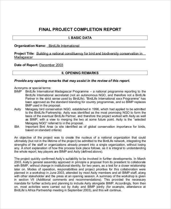 Sample Project Completion Report - 8+ Examples in PDF, Word, Excel