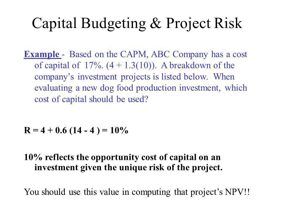 Capital budgeting essay example