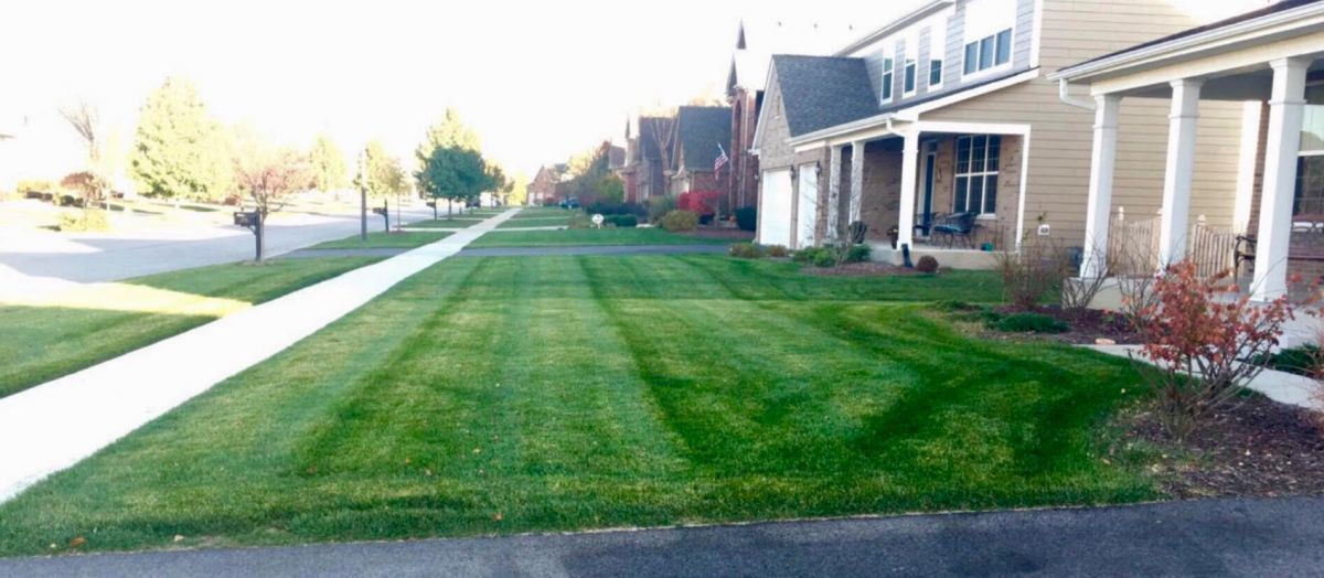 This Naperville Teen Runs His Own Lawn Care Company - Naperville ...