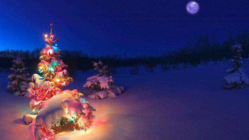 Christmas Dinner At Santas House Stock Vector Illustration ~ idolza