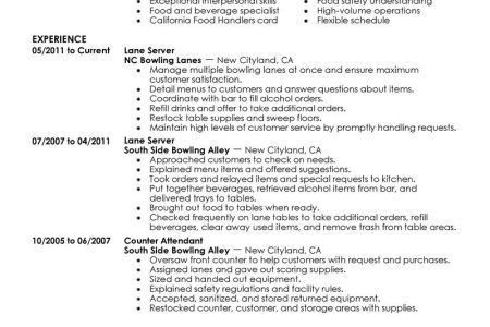Government Contractor Resume Examples - Reentrycorps