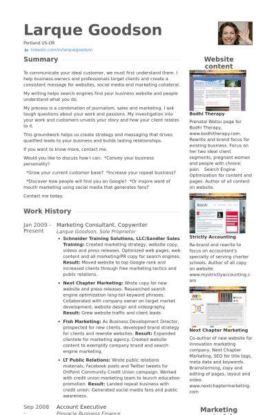 Copywriter Resume samples - VisualCV resume samples database