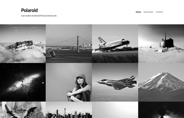 23 Best Photography Wordpress Themes 2013   Web Designer Hub