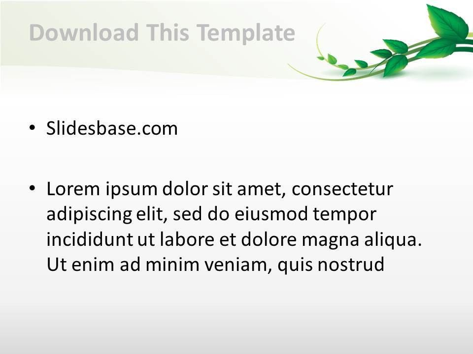 Vine Leaf PowerPoint Template   Slidesbase