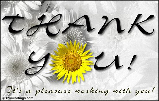A Pleasure Working With You... Free Thank You eCards, Greeting ...