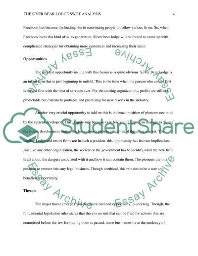 SWOT Analysis Essay Example | Topics and Well Written Essays ...
