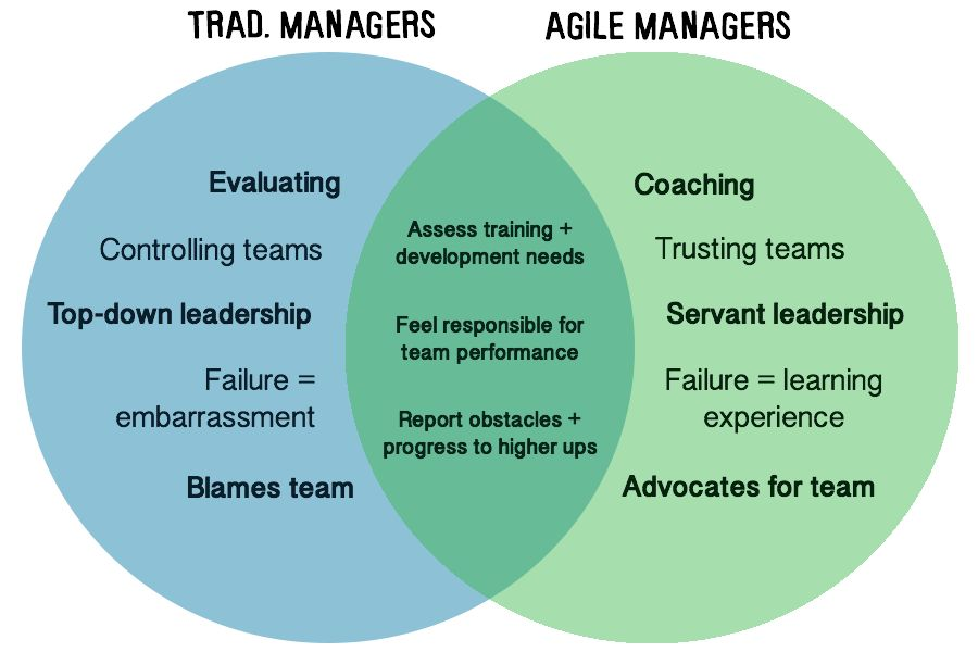 Role Of A Scrum Team Manager | ScrumHub