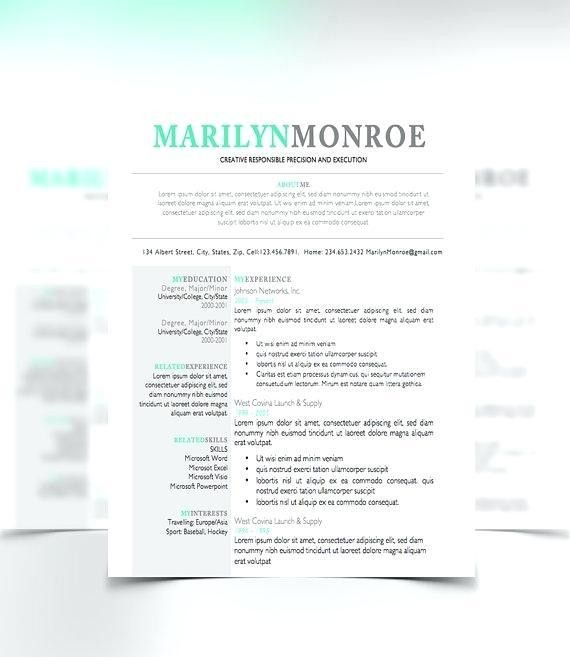 Free Chronological Resume Template Word 2003. example of cv resume ...