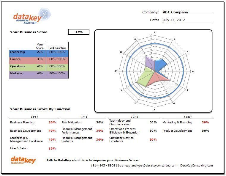 DataKey Business Analyzer | Westchester Management Consulting ...