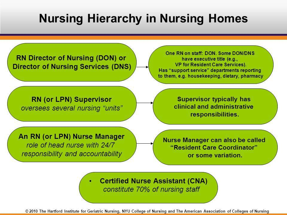 Nursing Practice in Nursing Homes Sarah Greene Burger, RN-C, MPH ...