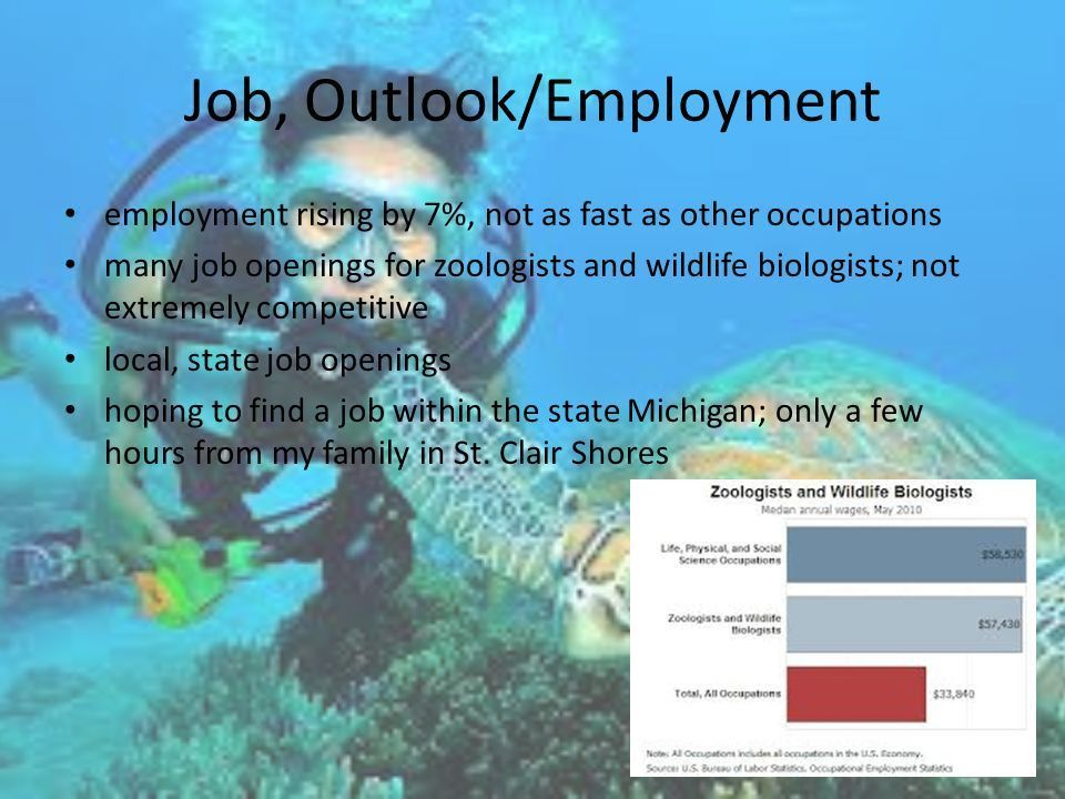 Wildlife Biologist/ Zoologist Natalie VanDerHaegen May 1, nd Hour ...