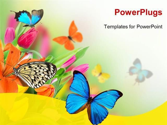 PowerPoint Template: Spring flowers with exotic butterflies (27212)