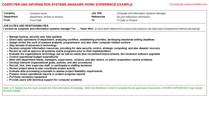 Computer And Information Systems Manager Job Title Docs