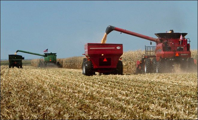 Filing a Crop Insurance ClaimBanks Law Firm