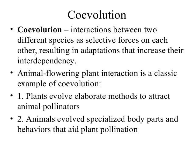 Pollination '' Reproduction in Plants""
