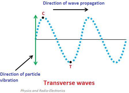 Transverse and Longitudinal Waves
