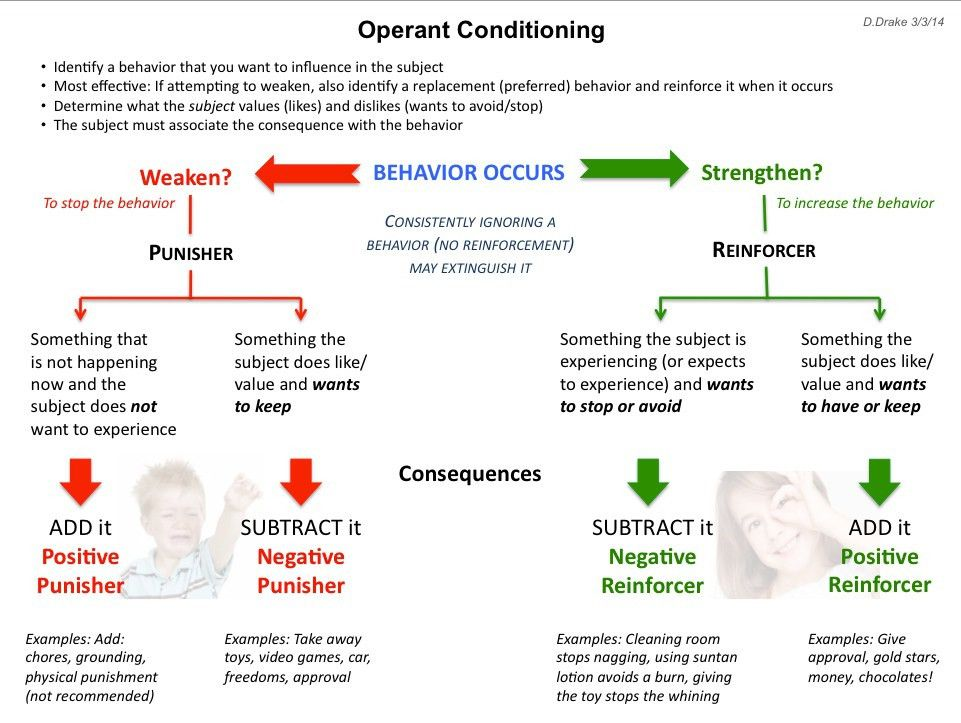Operant conditioning explanatory diagram for positive and negative ...