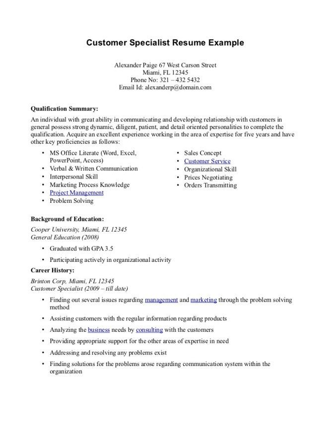 Resume Summary Example - Resume Sample